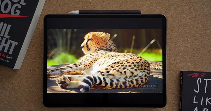 Màn hình iPad Pro 2021 M1 12.9 inch 128GB 5G là một trong những tính năng đáng chú ý